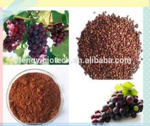 Pura 100% alta calidad natural extracto de semilla de uva / semillas de caoba de semillas