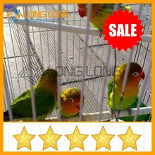 bird cage bird cage materials small bird cage wire mesh