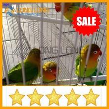 bird cage acrylic bird cage build a bird cage