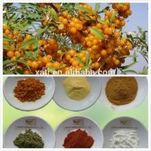 FDA registered seabuckthorn fruit juice powder