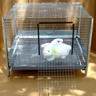 low price plastic rabbit cage trays (15 years old factory)