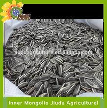 2014 New Crops sunflower seeds 5009