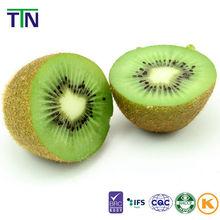 TTN All Kinds Of Dried Fruits Kiwi Fruit Prices Freeze Dried Kiwi Fruit Slice