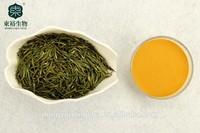 Green tea polyphenols 95% Catachine EGCG