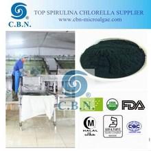 Vitamins and health food supplement spirulina powder