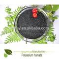 fieno pingxinag leonardite fonti puro acido umico alimenti ricchi di potassio lista