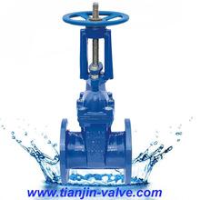 g.o extended stem gate valve