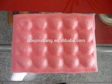 Fruit insert plastic Tray for strawberry
