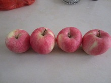 2014 blush red fuji apple for export