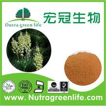 Top garde Natural Yucca Extract/Saponins 30%-60%