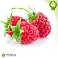 Weight Manegement Raspberry Extract/Freeze Dried Raspberry Powder