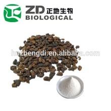 GMP Herbal Medicine Glossy Privet Fruit Extract(Ursolic Acid 25%-98%)