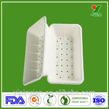 Dongguan OEM custom plastic food compartment tray