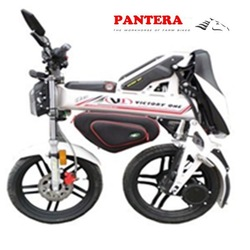 PT-E001 Aluminum Body Brushless 1500w Motor Pedal and Chain System Electric EEC Motorbike