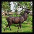 สัตว์บรอนซ์รูปปั้นกวาง