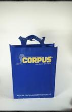 Insulated cooler bag Use and Non-woven,Non woven,pp woven ,nylon or polyester Material small cooler bag