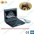 grandi animali utilizzati veterinario apparecchi ad ultrasuoni