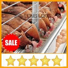 jaula del pollo barato galvanizado de codorniz jaula del pollo fácil equipo de cultivo de suministro directo de fábrica
