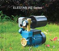 1 ELESTAR WZ series self-sucking water pumps 2 Liters pressure vessel roof booster pump