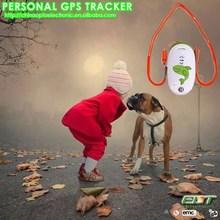 cheap sirf3 chip mirco mini tracking chip gps pet