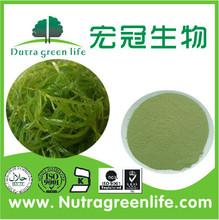 dried seaweed Extract Powder / marine algae extract