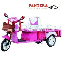 PT-EC Chongqing 500w Motor Powered Cheap Cargo Electric Tricycle