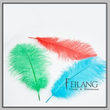 Feilang Large Wing Plumes Ostrich Feather 70cm