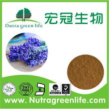100% nature Lavender Extract 10:1,20:1 /Lavandula Angustifolia