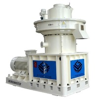 China Leading Technology Ring Die Wood Pellet Making Machine