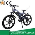 aprobado por la ce 350w aleación de aluminio de doble suspensión del vehículo eléctrico