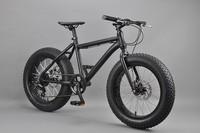 20 inch Fat bike 20 inch fat bike in Electric Bicycle