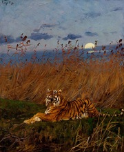 High quality handmade wall decor animal tiger oil painting for home decorative
