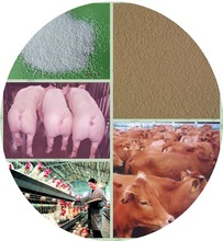 wholesales supply zinc oxide price/animal feed coated znic oxide and premix