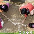 fóssil de dinossauro da escavação do dinossauro para parque fins educacionais