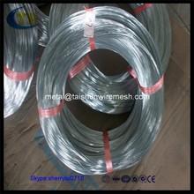 Galvanized Silk Iron Wire 0.7mm----GW601S