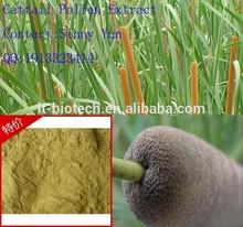 pollen typhae cattail pollen powder factory in bulk Top Quality Pollen Typhae Extract,Pollen Typhae Extract Powder,Pollen Typhae
