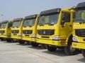howo 10 exportador de neumáticos motor del camión volcado 336hp