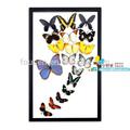 Fousen naturaleza& de arte de la mano excelente- hecho marco 3d mariposa decoraciones de la pared