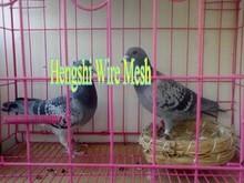 cheap price pvc coated bird breeding cage