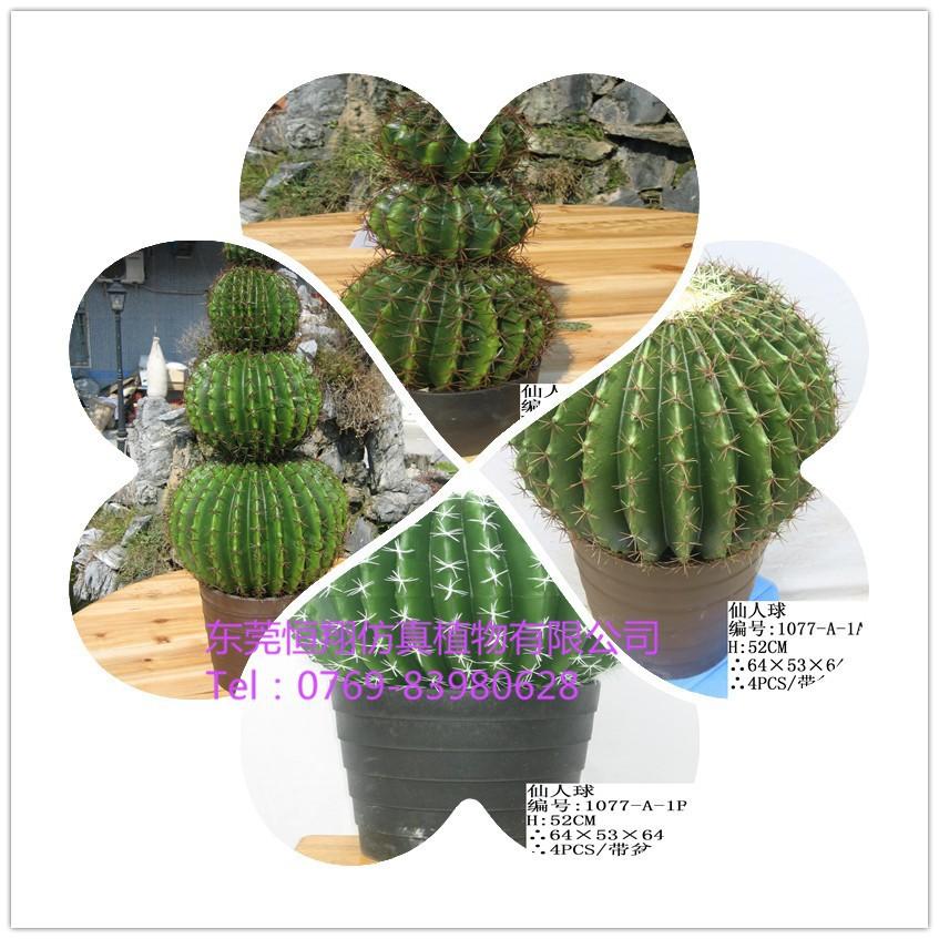 decoracao de interiores estilo handmade: de plástico falsos e árvores bonsai para decoração de interiores