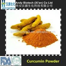 Hot Selling Pure Natural Curcumin Powder 10:1