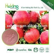 pomegranate leaf extract powder/Pomegranate Fruit Powder/pomegranate peel extract