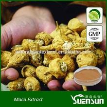 GMP manufacturer supply organic pure natural and high quality powder of peru maca