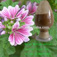 Mallow powder Malva Mauve Malva sinensis extract High quality Malva fruit extract /Cluster Mallow Seed Powder