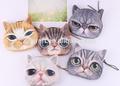 Enfants chat, visage. étui à fermeture éclair médaille. jeunesse, coulissante, portefeuille.& chat, visage. sac