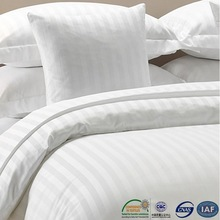 fashion design 300T,250T embroidery king size hotel collection comforter