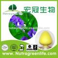 Compra baikal escutelaria extracto de raíz de precio, medicina de la hierba baikal escutelaria extracto de la raíz