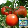 Kinghami liquid foliar fertilizer for agriculture organic NPK fertilizer