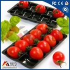 tomato black Fast Plastic Food Tray