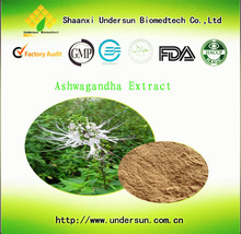 High quality ashwagandha root extract by manufacture